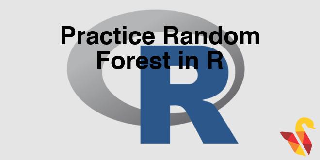 203-7-6-practice-random-forest
